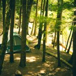 Family Camping Trip: The Ultimate Checklist